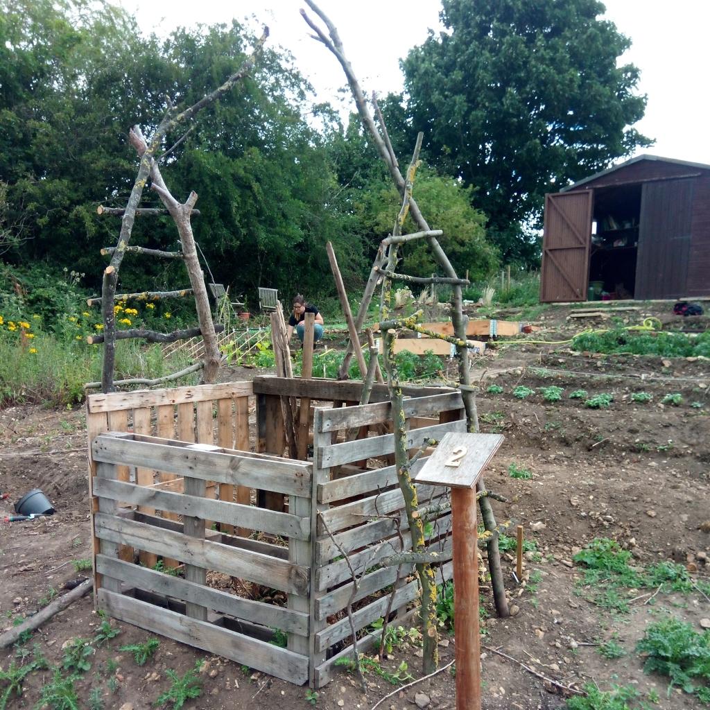 Allotment 2 compost