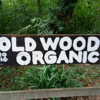 Old Wood Organic: good food growing in Skellingthorpe