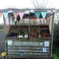 Community gardening in Donington on Bain