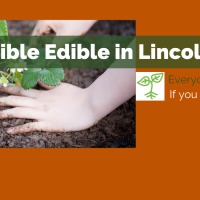 Incredible Edible in Lincolnshire