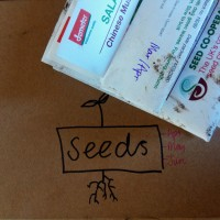 The Future of Seed