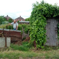 Willoughby Road Allotment Association: The Power of Allotments for Community, Kindness and Learning